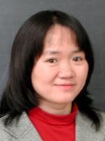 Professor Hong Hua